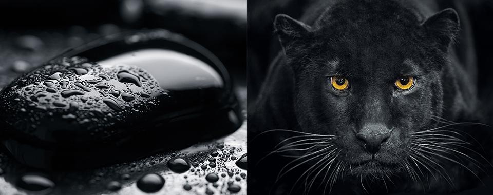skai jet black