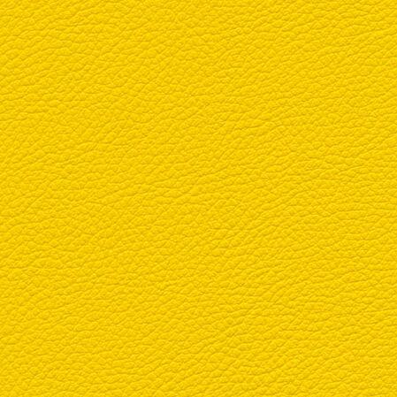 skai Gemini yellow