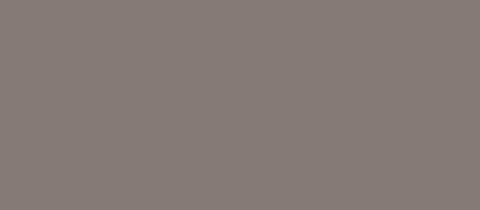 colore classico basalt         0,40 1420