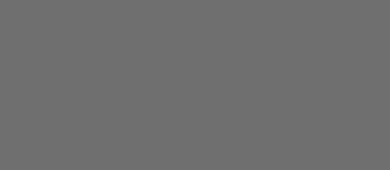 Perfect Touch arktisgrau       0,35 1420