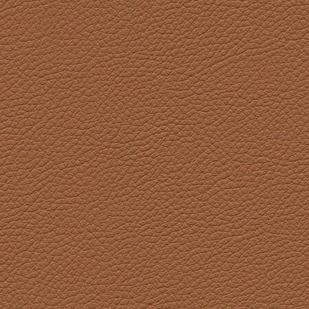 skai Gemini brown