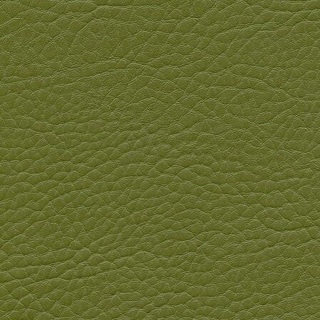 skai Parotega NF  olivgrün