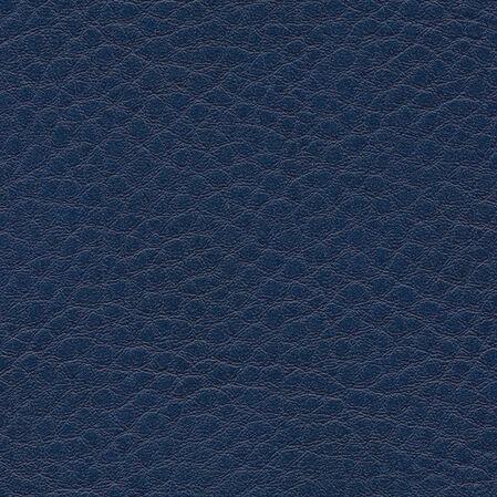 skai Sotega  ocean