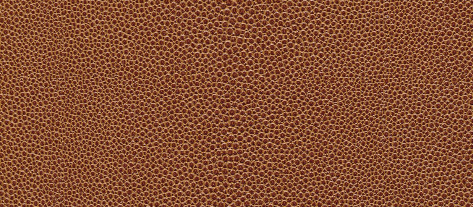 skai Soshagro EN  brown