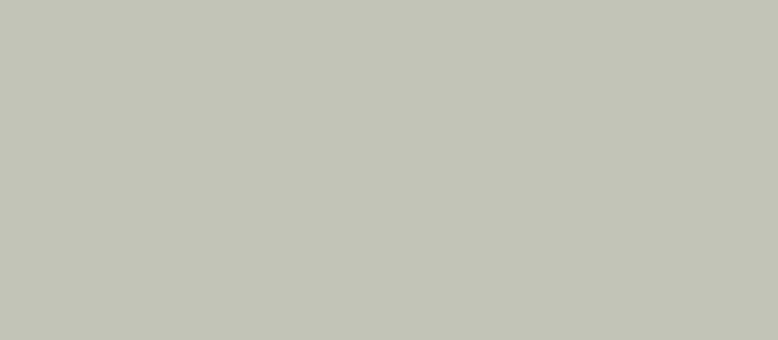 colore classico muschel        0,40 1420