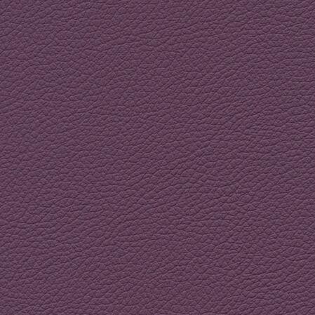 skai Gemini purple