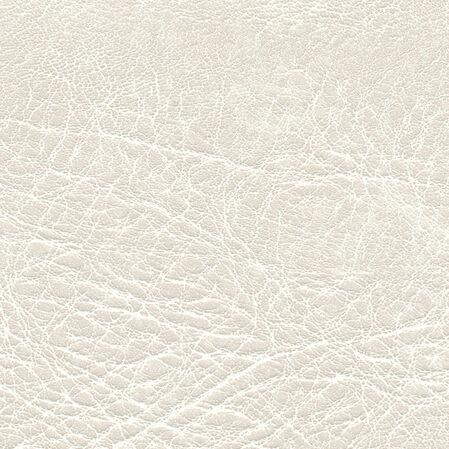 skai Pavinto  polar