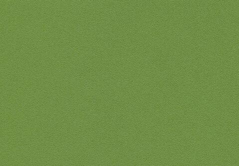skai Pandoria Plus  kaktus