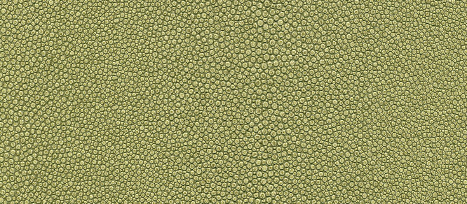 skai Soshagro EN  green
