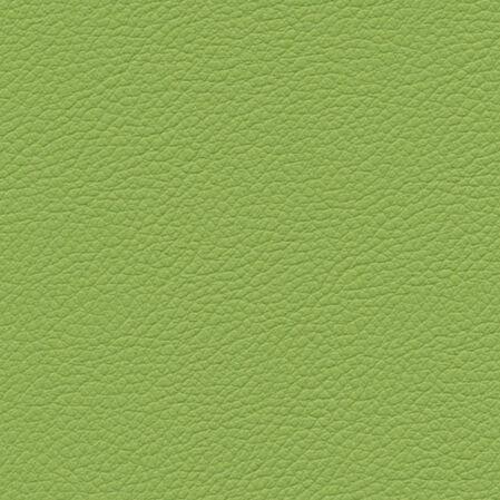 skai Gemini green