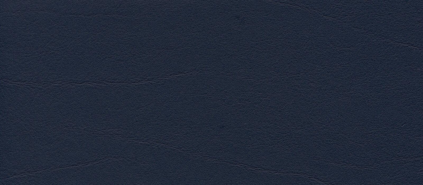 skai Tundra  ocean