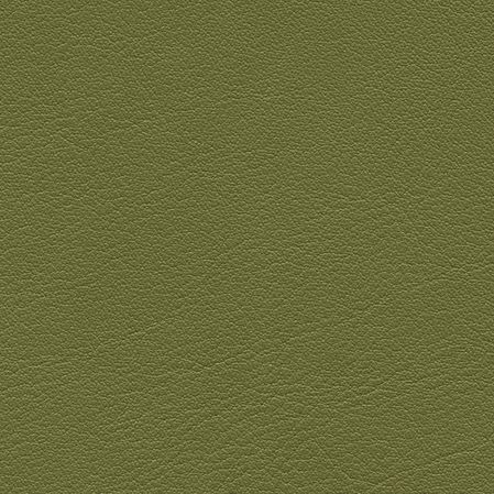 skai Palma NF  olivgrün