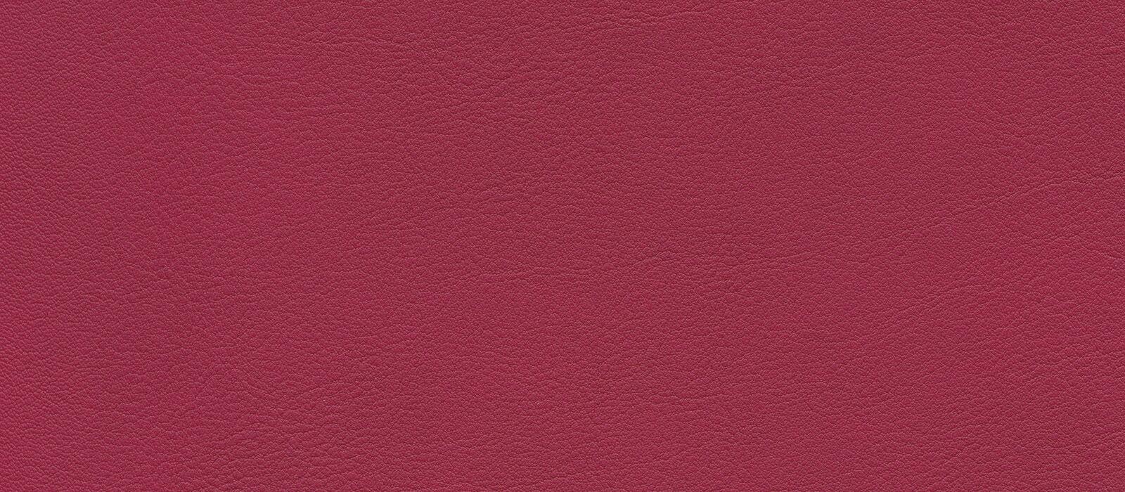 skai Palma NF  rubin